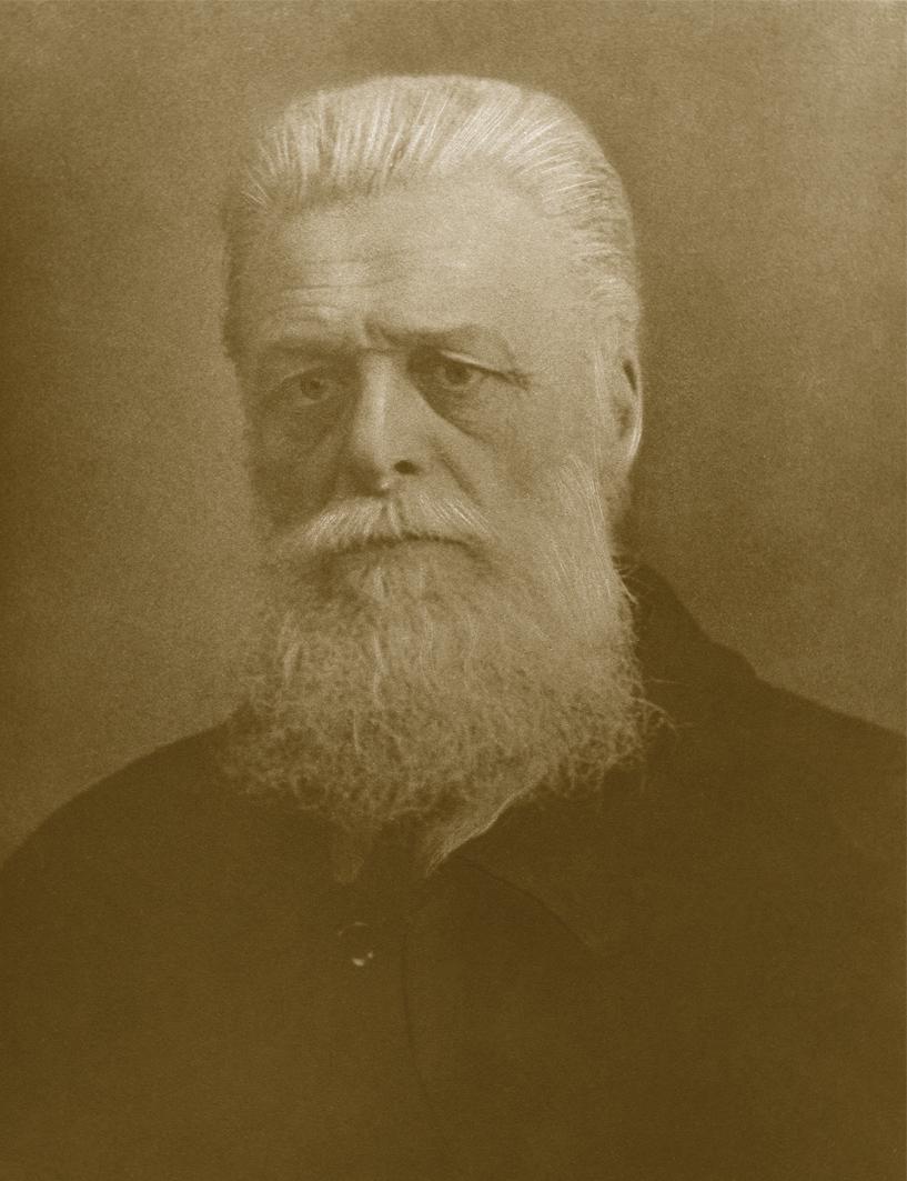 portret zamoyski